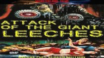 Attack Of the Giant Leeches | Science Fiction Horror Movie | Hollywood Black & White Films