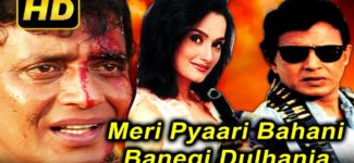 Meri Pyaari Bahania Banegi Dulhania (2001) Full Hindi Movie | Mithun Chakraborty, Rajeshwari Sachdev