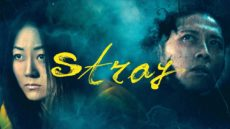 Newly Released Film: Stray – Official Trailer Full HD